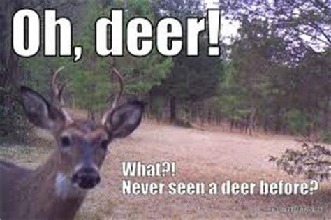 white faced deer memes