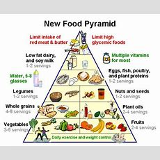 Practical Biology Science For Everyone The Newest Food Pyramid Choose My Plate