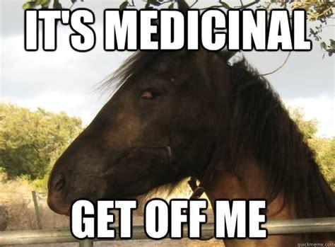 High Horse Meme - un cheval joue avec un poulet en plastique vid 233 o