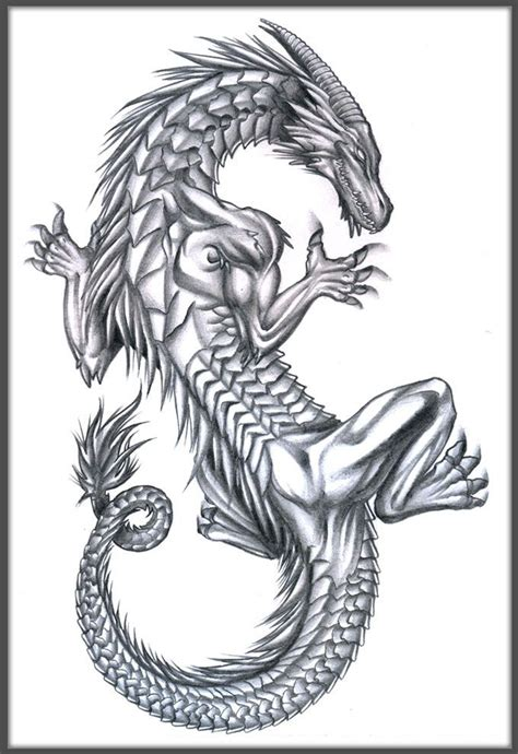 dragon tattoos  stomach