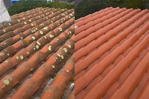 Tache De Javel : nettoyer sa toiture avec de l 39 eau de javel mauvaise id e ~ Voncanada.com Idées de Décoration