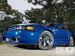 2003 Ford Mustang Cobra Terminator Wallpapers - Wallpaper Cave