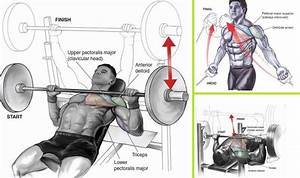 The Best Chest Workout For Building Mass