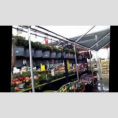 Here's Where I Work! Home Depot Garden Center!  Youtube