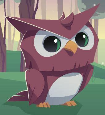 owl animal jam wiki fandom powered  wikia