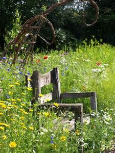 Rustic Garden Chair Flowers