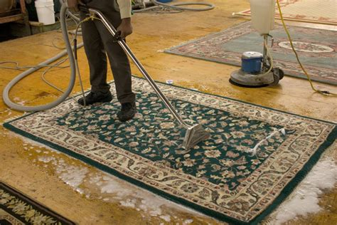 area rug cleaning cleaning and care of area rugs interior design costa rica
