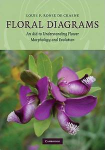 Floral Diagrams  An Aid To Understanding Flower Morphology And Evolution By Louis P  Ronse De