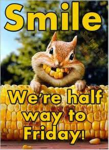 Image result for happy wednesday images animal