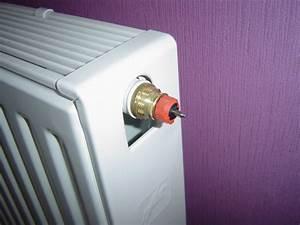 Mon Radiateur Ne Chauffe Pas : probl me avec un chauffage 1 tuyau chaud et l 39 autre reste froid ~ Mglfilm.com Idées de Décoration