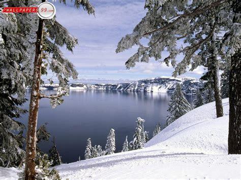 750x1334 beautiful snow green nature free desktop wallpapers winter wallpaper cave