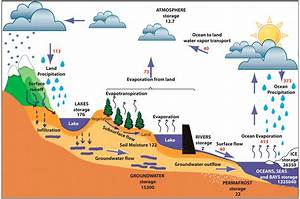 The Hydrological Cycle  Estimates Of The Observed Main Water Reservoirs