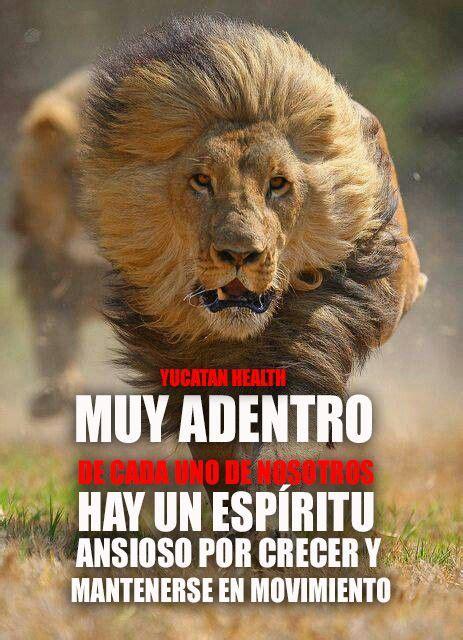 motivacion movimiento leon inspiracion siguenos en