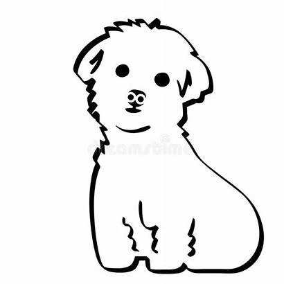 Maltese Dog Crafteroks Eps Mano Env Vettore