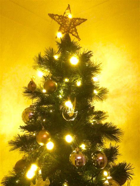 My Christmas Tree Light Recommendation…