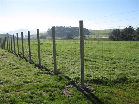 deer fences and gates deer vineyard orchard fencing sc barns