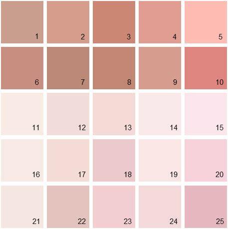 benjamin moore paint colors pink palette 06 house