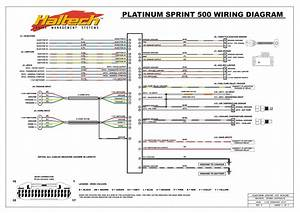 Platinum Sprint 500 Wiring Diagram