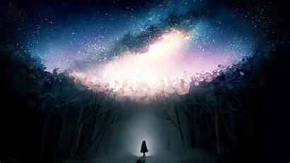 Alone Dark Stars Forest Fantasy Wallpapers Desktop