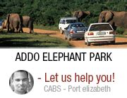Car Rental Elizabeth South Africa by Cabs Car Hire South Africa Affordable Car Rental Rates