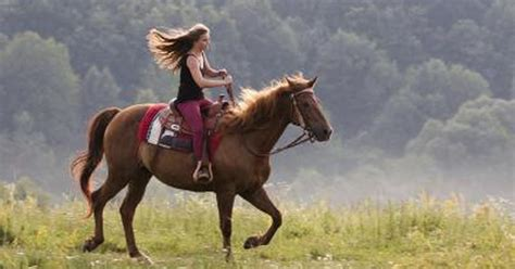 riding horseback double stable stables enjoy horse ride fun cedar creek trail exercises posture spring livestrong spend why need inn