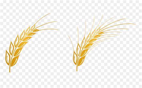euclidean vector gratis computer file wheat vector