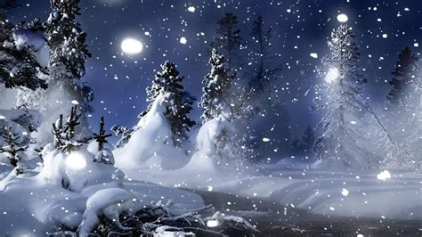 Nature Landscapes Christmas Trees Forest Snowing