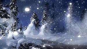 Nature landscapes christmas trees forest snowing ...