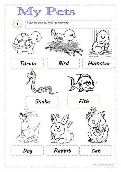 pets worksheet free esl printable worksheets made by teachers