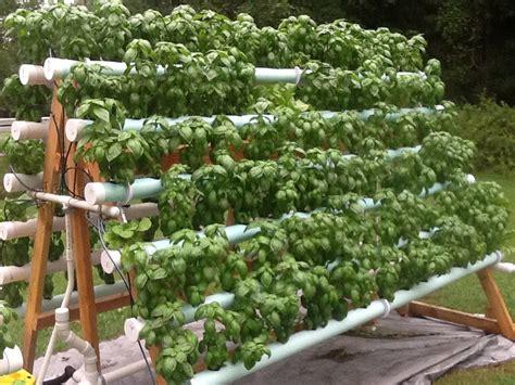 Diy Vertical Hydroponic Garden by A Frame Nft Basil System Hydroponic Gardening