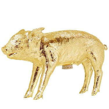 bank   shape   pig gold novacom