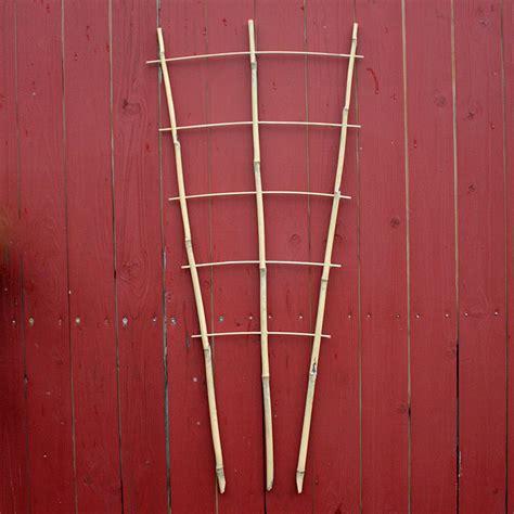 rankgitter aus bambus native plants