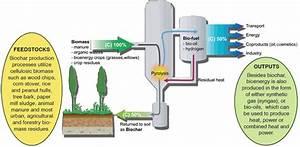 Biochar Technology