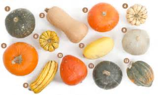 Varieties Of Pumpkins For Cooking by Roasted Butternut Squash Recipe