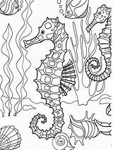 Coloring Sea Pages Colouring Under Drawing sketch template