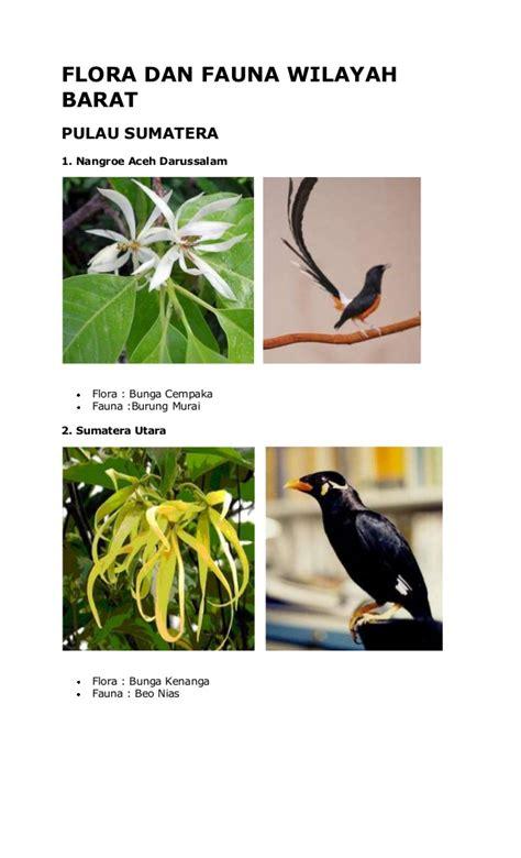 flora  fauna wilayah barat