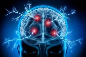 ¿Qué es Neurociencia?
