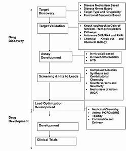 Flow Chart Of Drug Discovery And Development Process