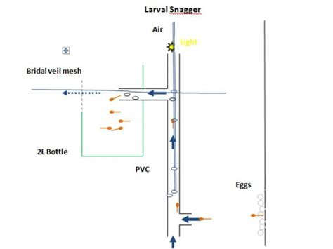 diy larval snagger
