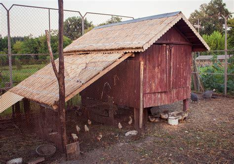 construire un poulailler comment construire un poulailler en bois