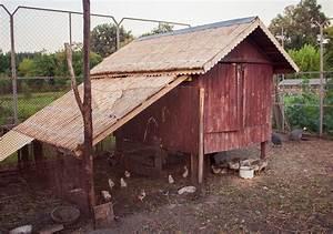 Construire Un établi En Bois : comment construire un poulailler en bois ~ Premium-room.com Idées de Décoration