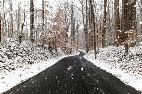 Everything About Washingtons First Snowfall Of The Winter