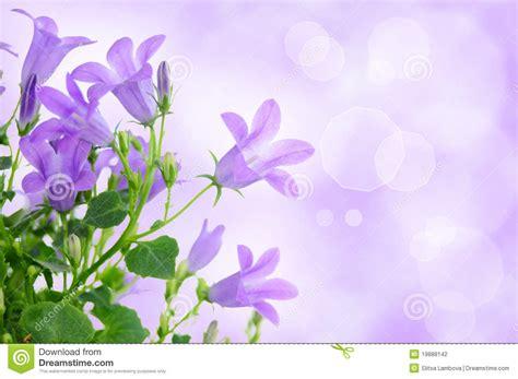Pretty Purple Background Wallpapersafari