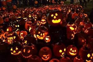 keene, pumpkin, festival