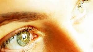 Grüne Augen Bedeutung : das gehirn steuert k rperfunktionen und verarbeitet sinneseindr cke ~ Frokenaadalensverden.com Haus und Dekorationen