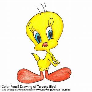 Tweety Bird Colored Pencils - Drawing Tweety Bird with ...