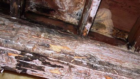 Rotten Deck Repair Service In Vancouver  Arbutus Vinyl