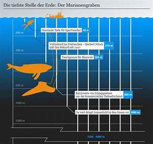 Wie Tief Erde Im Gewächshaus : 11 fakten ber unsere geheimnisvollen ozeane wissen umwelt dw ~ Markanthonyermac.com Haus und Dekorationen