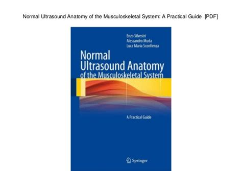 Musculoskeletal ultrasound anatomy and technique pdf ...