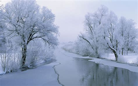 Aesthetic Winter Wallpaper by Yushu Chiung Chih The Aesthetic Snow Hd Photography